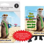 SJT beach otter place holders